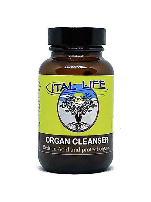 Organ Cleanser