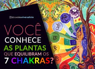 Você conhece as plantas que equilibram os sete Chakras?