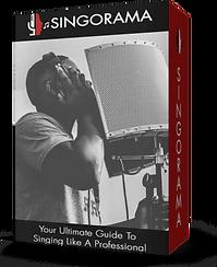 SINGORAMA - Your Ultimate Guide To Singi