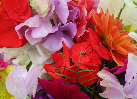 Cornish-grown flowers