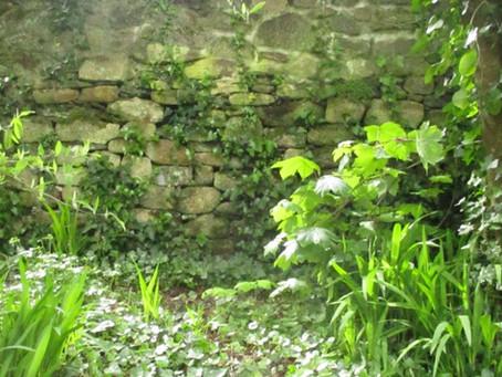 Glasney College, Penryn - Medieval wanderings