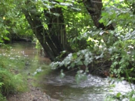 Kenwyn - River & Round