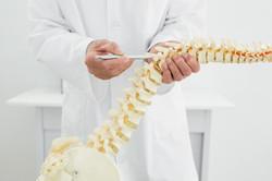 Chiropractic-Centreville-Virginia