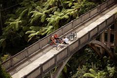 Cycling_the_Bridge_to_Nowhere.jpg
