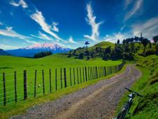 Ratamarie Road with Ruapehu.jpeg