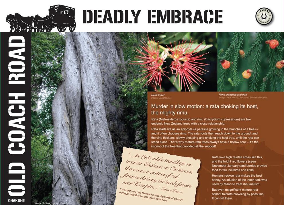 Visit Ohakune - deadly embrace-01.png