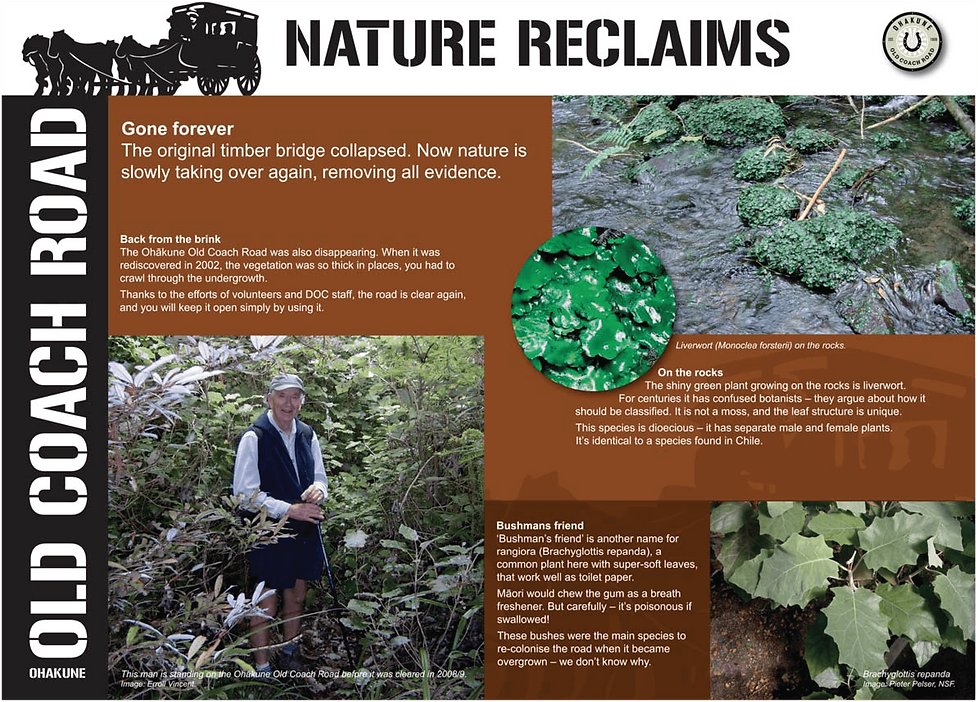 Visit Ohakune - Nature reclaims-01 2.png