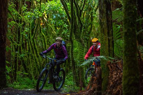 Biking the Ohakune Old Coach Road. Visit