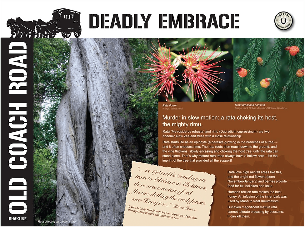Visit Ohakune - deadly embrace-01.png