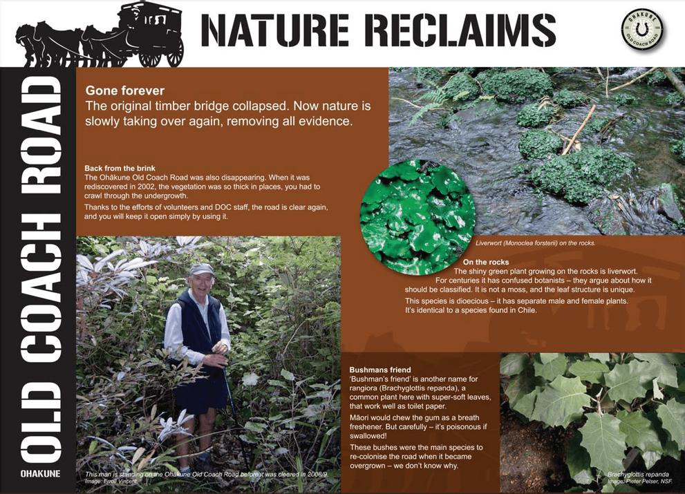 Visit Ohakune - Nature reclaims-01.png