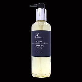 SANDALWOOD & FRANGIPANI Shampoo