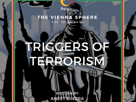 Triggers of Terrorism