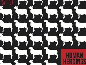Marc O'Reilly - Human Herdings
