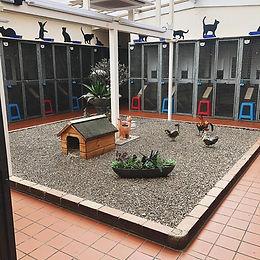 Courtyard A.jpg