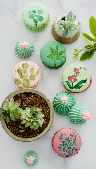 Hand Painted Macarons and Succulent Meringues