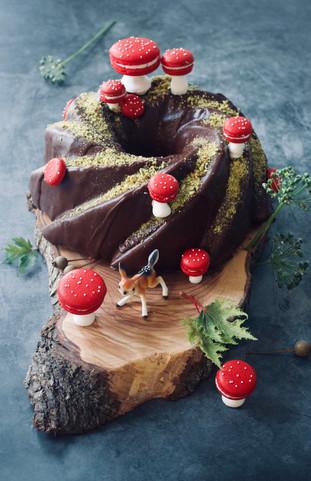 Chocolate Bundt Cake  with Macaron Shrooms