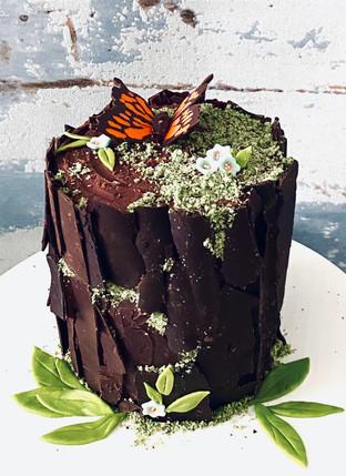 Chocolate Woodland Cake