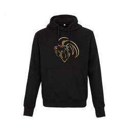 Aries official hoodie