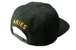 Aries Back_