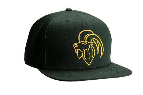 Aries Snapback Caps