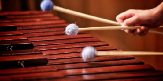 marimba shot