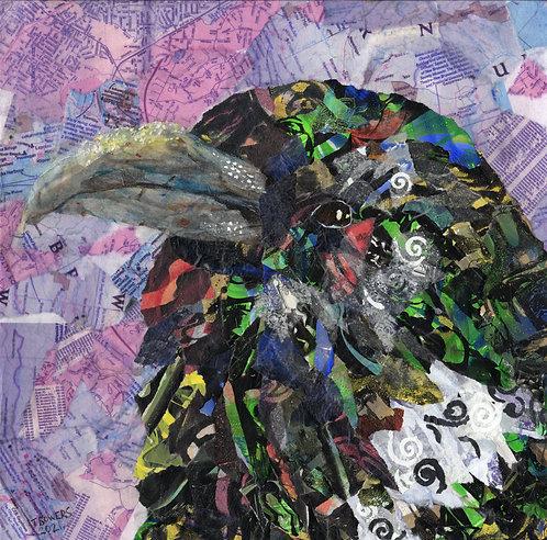"""Magpie Collage"" 12x12"