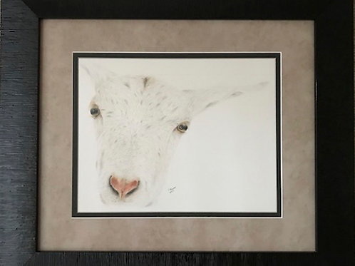 """Star"" - Original Framed"