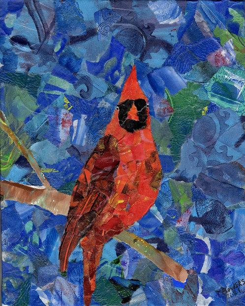 Cardinal Collage - 8x10
