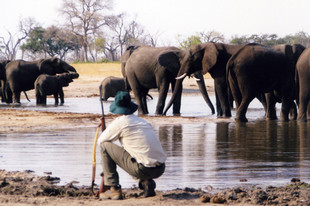 Colin observing a watering hole