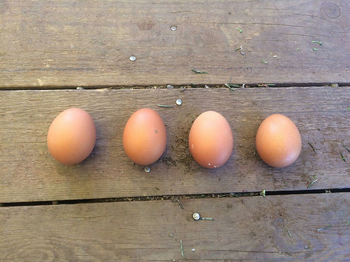Uova bio azienda agricola n 12 uova