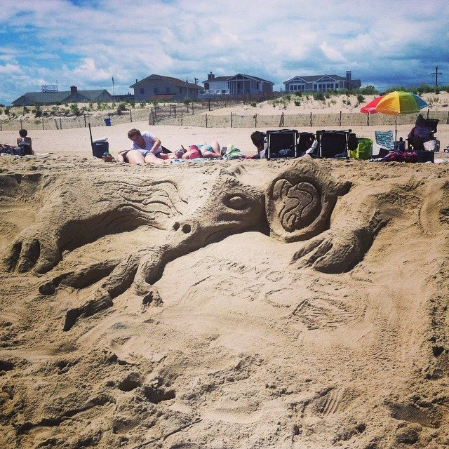 My dragon at the beach today