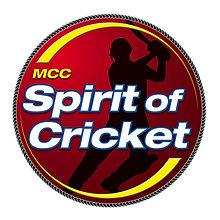 spirit f cricket logo.jpg