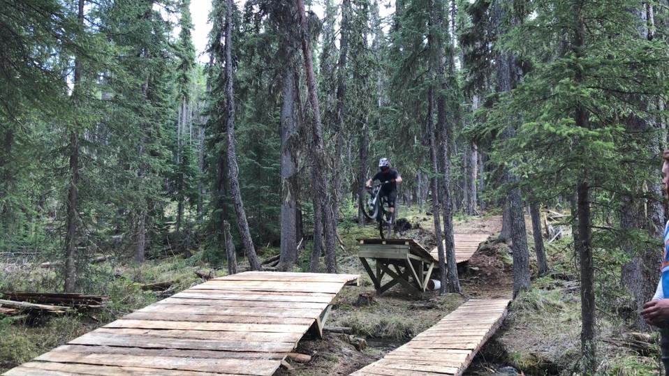 Bearded Lady Creek Gap