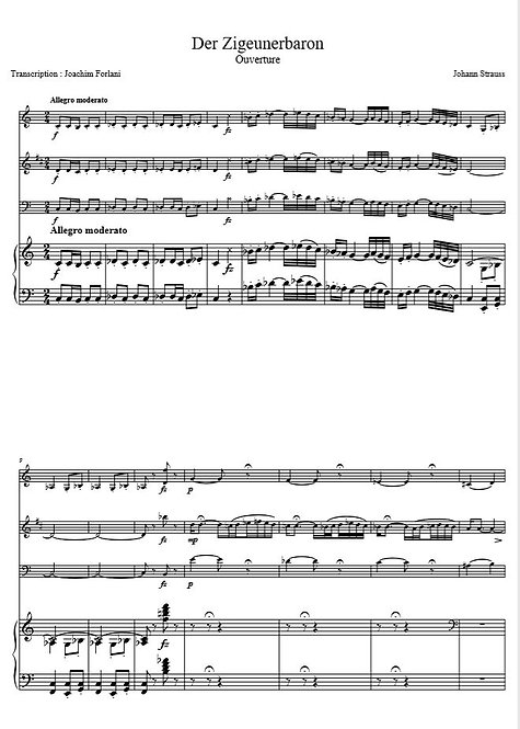 Strauss II J. - Der Zigeunerbaron, Ouverture_VlClVlcPno