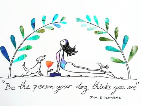 Lessons I'm learning from my Woofie Yoga sage…