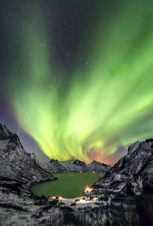Green Aurora Borealis Mefjord, Lofoten islands, Norway image