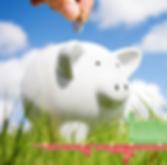 2018 Schwein mit KN-Kurve hochformat_edi