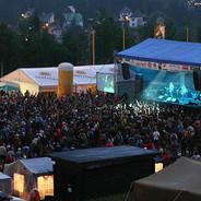 Musikfestival.jpg