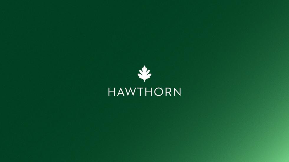 20201208-hawthorn-advisors-16-9-portfoli