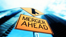 Mergers and Acquisitions : The Merger Syndrome