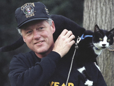 Meet 4 Cats That Have Called the White House Home