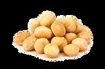 Macadamia-2.png