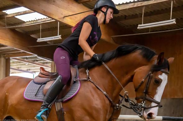 Mensch& Pferd