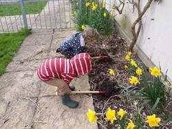 Gardening the border