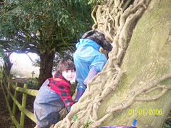Climbing in the small wood