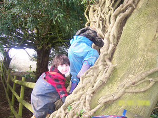 Children learning about, and taking, risks