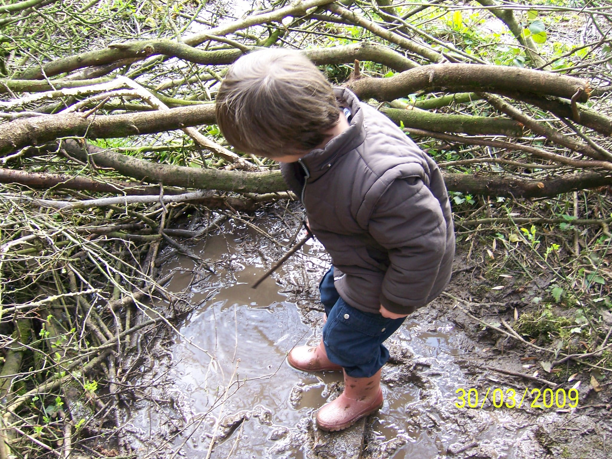 Exploring mud in the wood