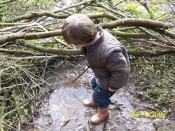 Exploring mud in the wood