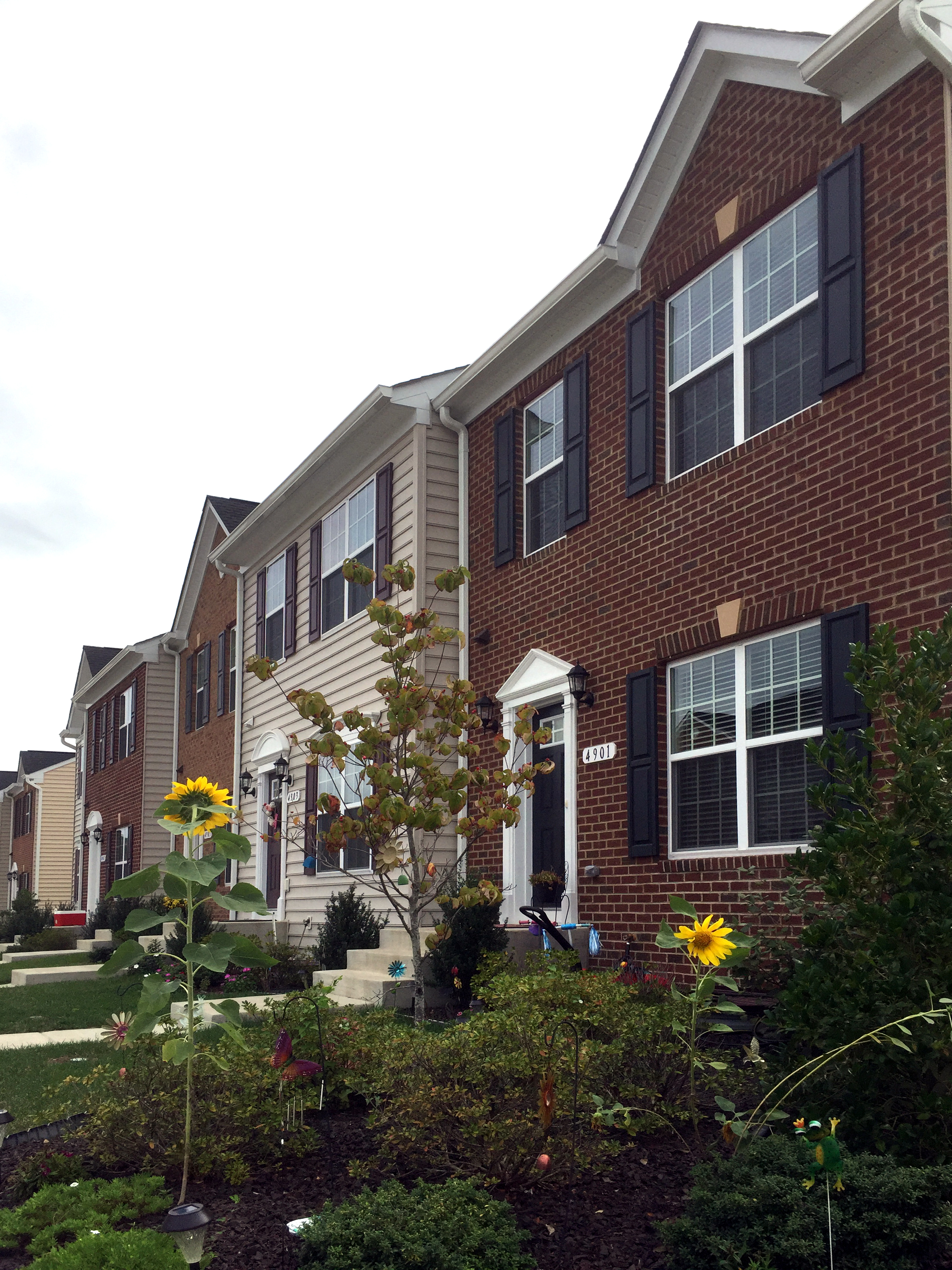 Townhomes at Lakeside Hazel Homes