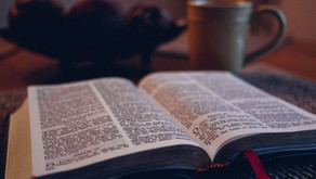 Are We in Error Because We Do Not Know the Scriptures?